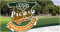 Piñones de Castilla